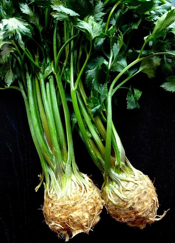 CeleriacPotatoSoup01