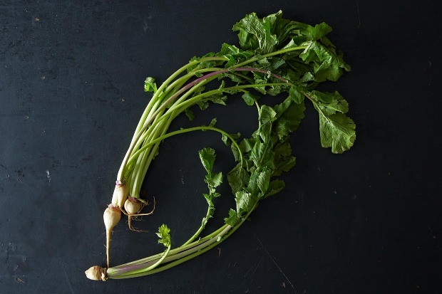 Everything You Need to Know About Turnip Greens, from Food52