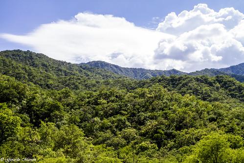 San Antonio de la Sierra 03