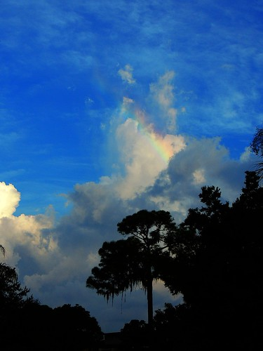 trees sky fall rain pine clouds rainbow flickr florida bradenton mullhaupt jimmullhaupt