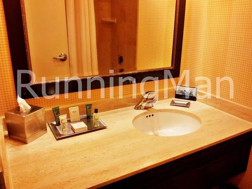 Hilton North Hotel 04 - Bathroom
