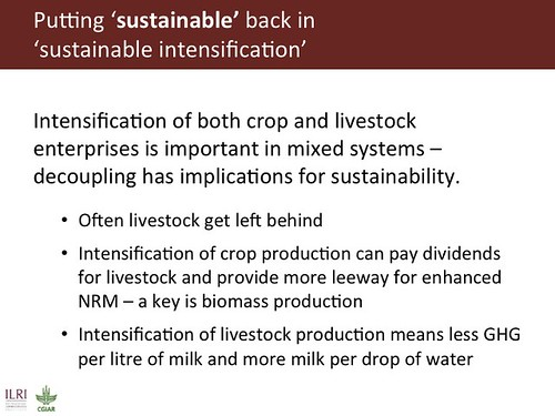Slide 14: Sustainable intensification