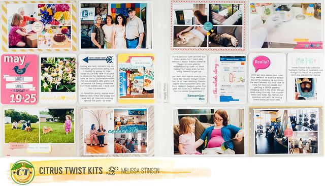 project life 2013 week 21.jpg