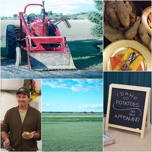 Idaho Potato Harvest - James Hoff Farm