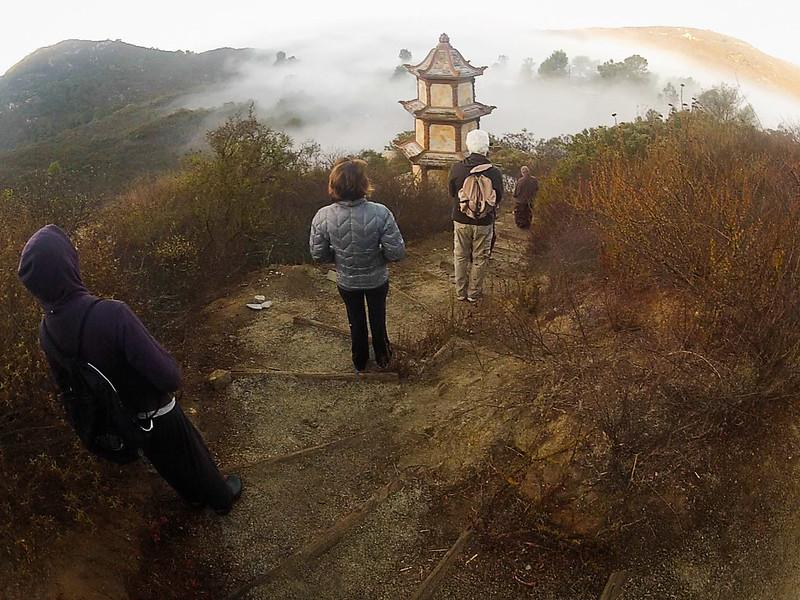 stupa fog ~d nelson