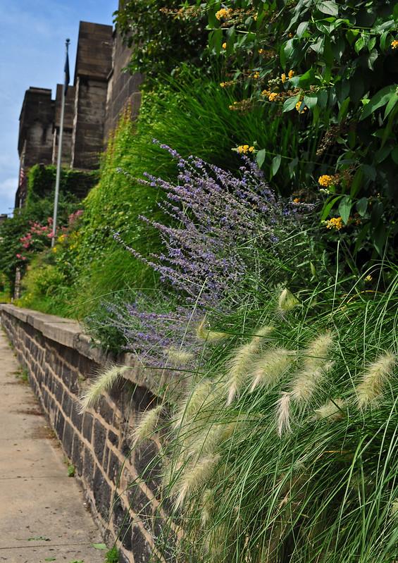 Terrace Garden (8)