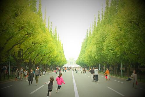 Ginkgo street park