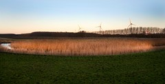 2010 12 12 Spaarndam Inlaagpolder