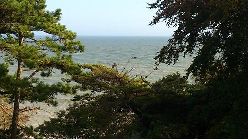 BeachyHeadMarathon2013