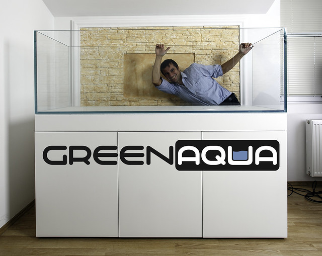 Green Aqua Showroom