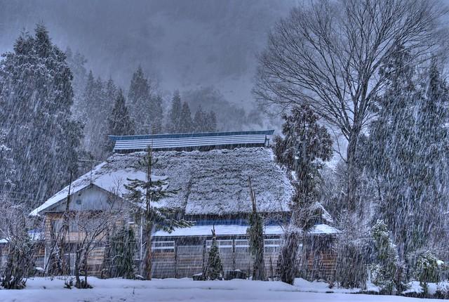 写真_いつもの雪