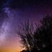 Milky Way by Jan Reiner
