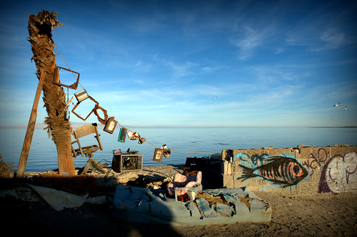 shore art, salton sea beach