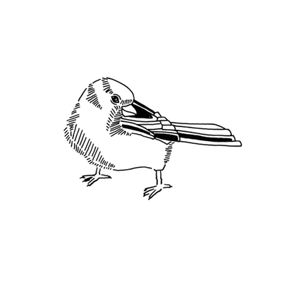 City Bird One