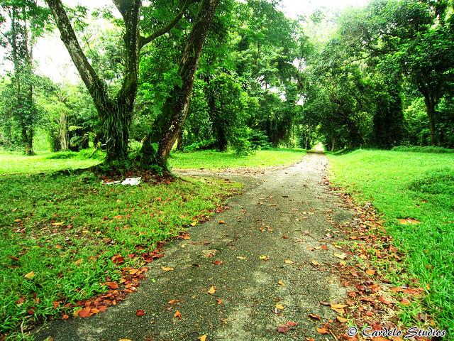 Bidadari Muslim Cemetery 02