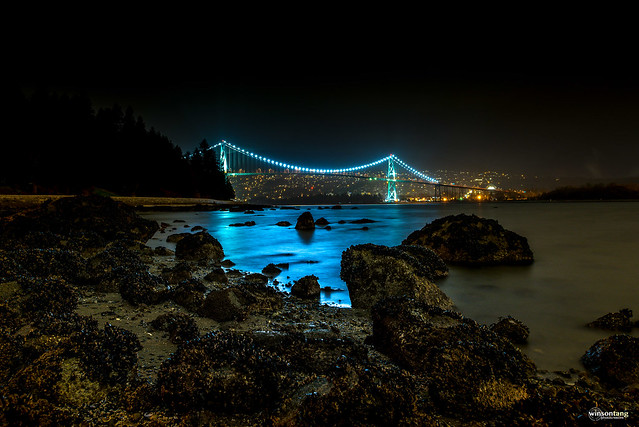 Viewing the Lions Gate Bridge at Low Tide - Explored