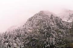 Snow-capped peaks III