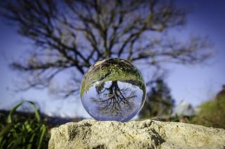 Crystall Ball - Valpolicella