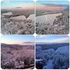 First #snow in #chianti #Tuscany #tuscanygram #tuscanyhills #tuscanygramers #tuscanycountryside #igerstuscany #instacollage #winter