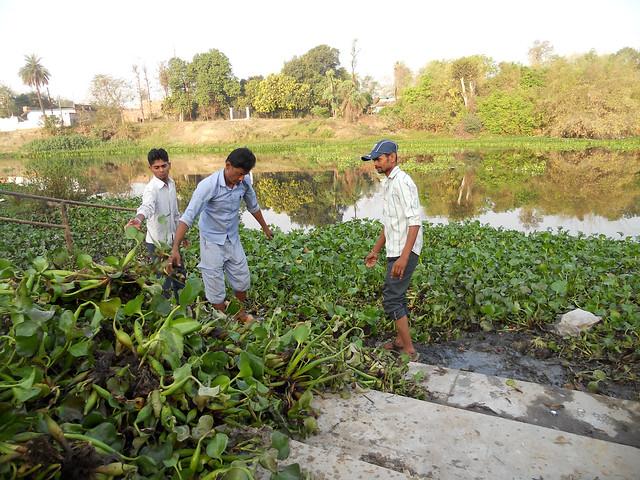 नदी सफाई में योगदान करते अन्य नगरवासी