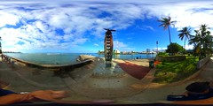 A tribute to the Pueo, the Endemic Hawaiian short-eared Owls at the Kewalo Basin Park in Honolulu, Hawaii  - a 360° Equirectangular VR