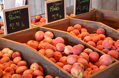 Humboldt County Fruitstand