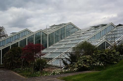 Greenhouse at Kew