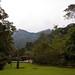 Serra dos Tucanos Grounds (Dani Free)