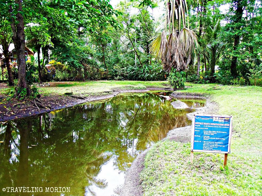 Balangay Museum