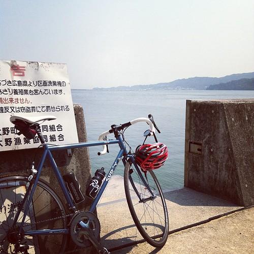 やっぱ海でしょー!海沿いサイクリング最高!
