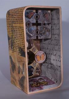 L&A Lepideptura box