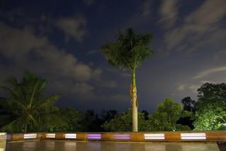 La Terrace, Auroville