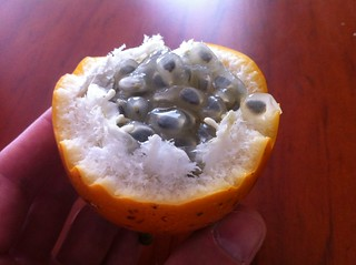 Granadilla fruit from Ecuador