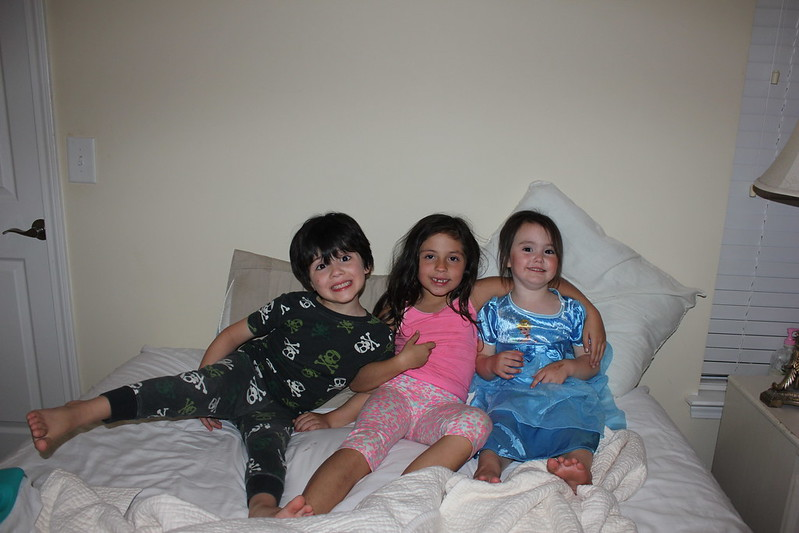 Sofia the First Princess Sleepover