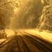 French Mountains Winter / La neige dans les monts du Lyonnais by falldream69