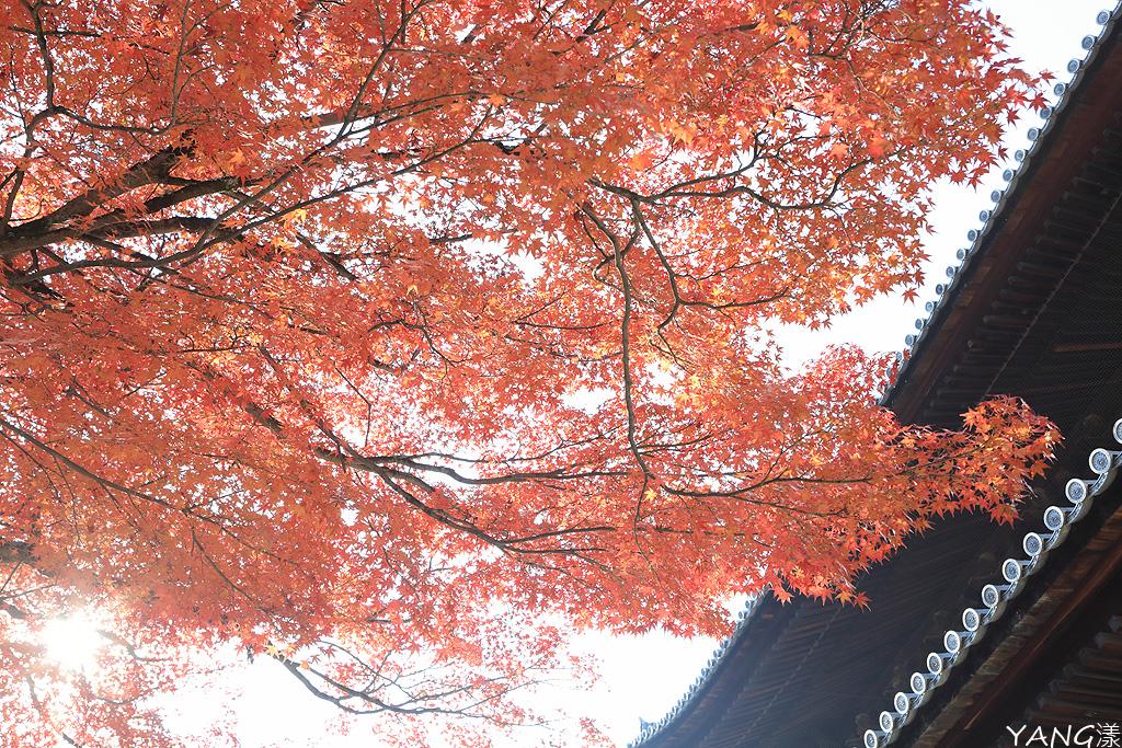 2013秋‧関西