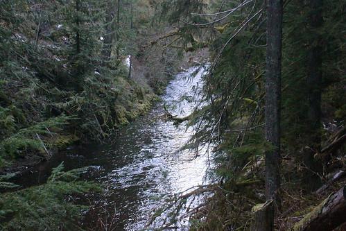 lake hot oregon forest river hiking roseburg north national springs toketee umpqua lemolo wsweekly68