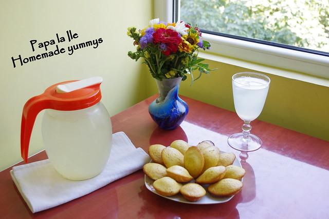 Madlene cu miere si lime (6)