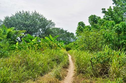 Mumbondo tracks