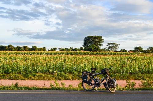 Day482-Bike-140228