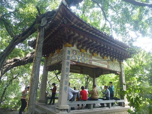 Fujian-Fuzhou-Colline Jade (32)