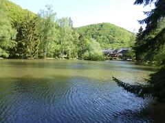 See am Forellenhof im Hahnenbachtal