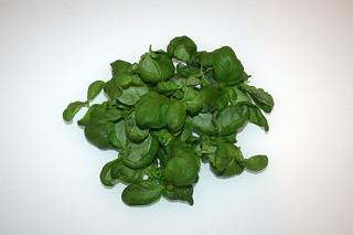 08 - Zutat Basilikum / Ingredient basil