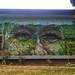 Street art in Sheboygan, USA, by Gaia. Photo by StreetArtNews..- by MrPilgrim-Art
