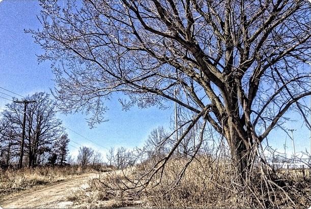 #geocaching at the end of the road #westtulsa #tulsa #oklahoma #oklahomaskies