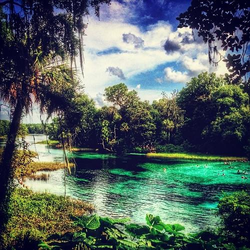 uploaded:by=flickstagram instagram:photo=769019416679792409731262 instagram:venuename=rainbowspringsstatepark2cfl instagram:venue=259192191