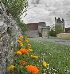 Bridoré (Centre Val de Loire France) - Photo of Saint-Flovier