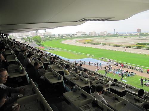 函館競馬場の指定席を見おろす