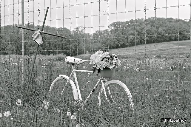 Bike Memorial2