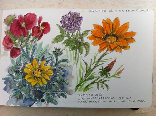 18 de Mayo de 2013. Día por la fascinación por las plantas. En el parque del Oeste, Málaga by Ignacio Dorao